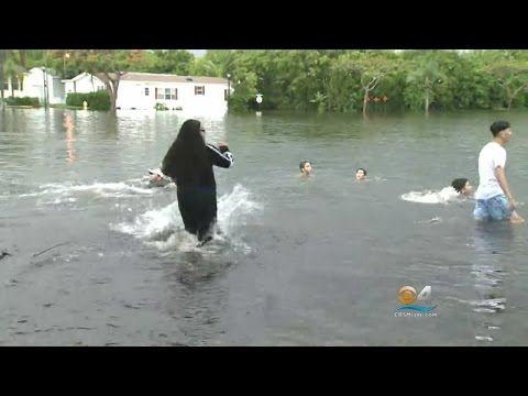Davie Drenched Following More Than 3 Inches Of Rainfall