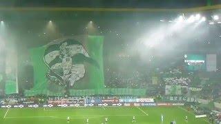 Arrepiante, Brutal 49382 a Cantar a Marcha e O Mundo Sabe Que_Sporting vs porto 2- 0 _01-02-2016