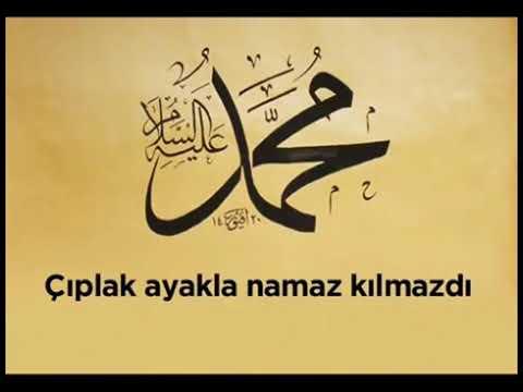 Hz muhammed in sozleri