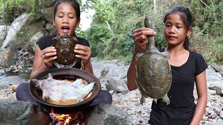 Find meet Turtle for Food forest - Turtle curry with Chili for Food ideas and Eating delicious Ep 80