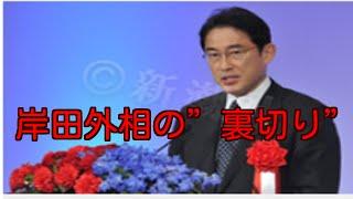 岸田外相「宏池会は憲法に愛着を持っている。当面、憲法9条自体は改正することを考えない。」