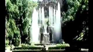 Jim McManus - palestrina
