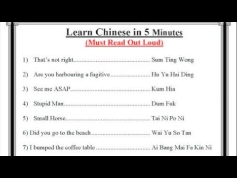 Learn Chinese in 5 Minutes (Warning: Contains some strong language)