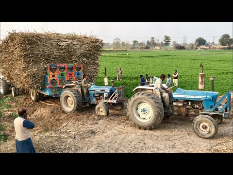 Ford 4610 | Ford 5610 | Hard Struggle Pulling Fully Loaded Trolley | Tractor Stunt