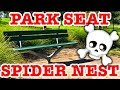 Australia Where Deadly Spiders Are Everywhere EDUCATIONAL VIDEO