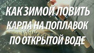 ЗИМНЯЯ РЫБАЛКА НА КАРПА ПО ОТКРЫТОЙ ВОДЕ НА ПОПЛАВОЧНУЮ УДОЧКУ(Зимняя рыбалка на карпа по открытой воде в Подмосковье на поплавочную удочку. Дельные советы рыбакам как..., 2016-10-18T10:05:45.000Z)
