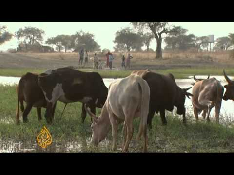 Abyei residents flee after north takeover