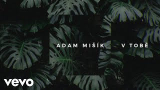 Adam Mišík - V Tobě (Lyric Video)