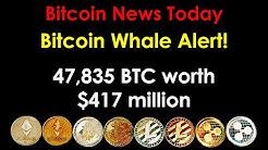 Bitcoin News Today 2020: Bitcoin Whale Alert! 47,835 BTC worth $417 million