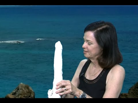 The Beauty of Subduction - Mariana Trench National Marine Monument - Patricia Fryer