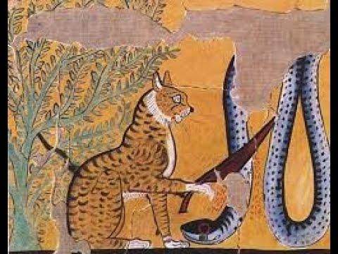 87 El gato: Egipto y sus misteriosos orígenes como un beneficioso mutante de difícil domesticación