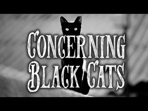Concerning black cats