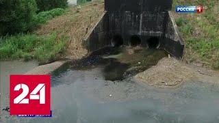 Ядовитый пруд в Новой Москве: кто сливал в водоем отходы с аммиаком и формальдегидом - Россия 24