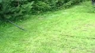 Установка системы автоматического полива газона(Источник: ..., 2013-01-30T09:22:07.000Z)