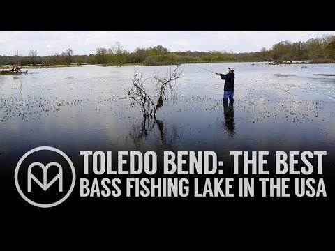 Toledo Bend: The best bass fishing lake in the USA