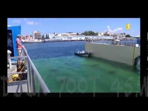 Dock Flottant - Guadeloupe