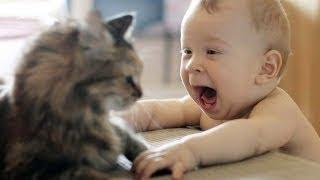 Babys Lachen hysterisch auf Katzen Kompilierung 2014 [NEU HD]