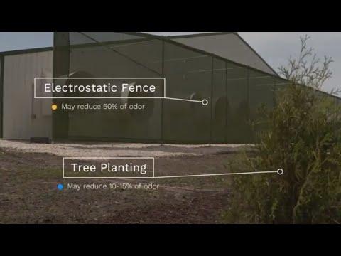 Iowa Minute: Iowa farmers use electrostatic fences to reduce pig farm odors