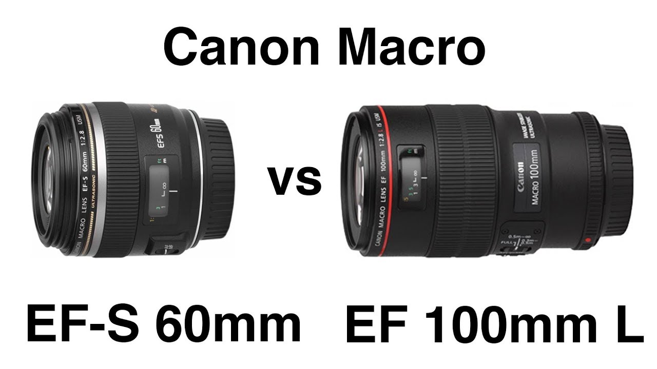 what is the best canon macro lens for dslr