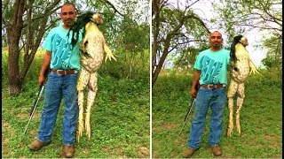 This Man Proves That Massive A 'FROGZILLA' Is Living In Texas