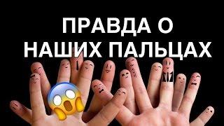 Обзор на человеческие пальцы | Самый Плохой Блог