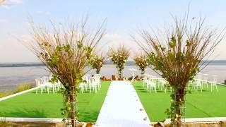 Оформление свадьбы живыми цветами от салона Зеленый рай