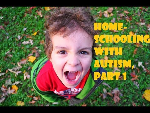 Homeschooling a Child with Autism, Part 1