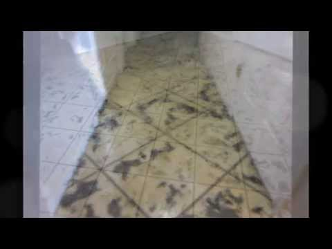 How to Stain Concrete, Tuscan Slate Tiled Decorative Coating, Columbus, Ohio