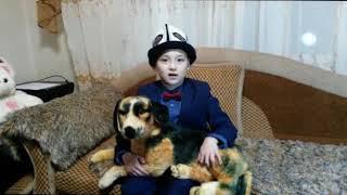 Албанали поздравляет с годом собаки и расскажет про породу собак Тайган-Киргизская борзая