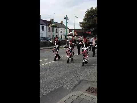 Trench Memorial Flute Band Limavady -