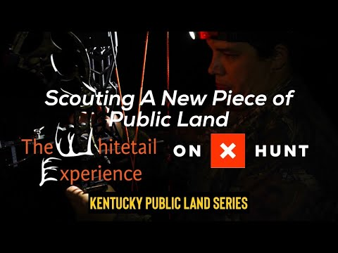 Scouting A New Piece Of Public Land Pt.2 |Boots On The Ground| Kentucky Public Land Series