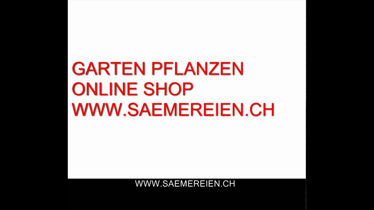 Youtube Garte Garten Pflanzen Online Shop Youtube
