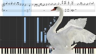 Белый лебедь на пруду. Лесоповал.