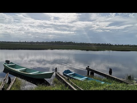 GUYANA: SECOND HALF OF CANAL NO 2 MAIN ROAD [FROM THE BACK TO CASEY BRIDGE ] PART 2