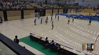2018IH  女子ハンドボール 1回戦 彦根翔西館(滋賀県)対 麻生(茨城県)