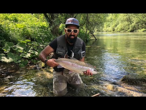 Fly Fishing Slovenia 2018 - Kingfisher Team