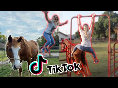 Recreating EQUESTRIAN TIK TOKS! PART 2!!