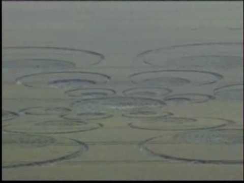 UFO And Crop Circles