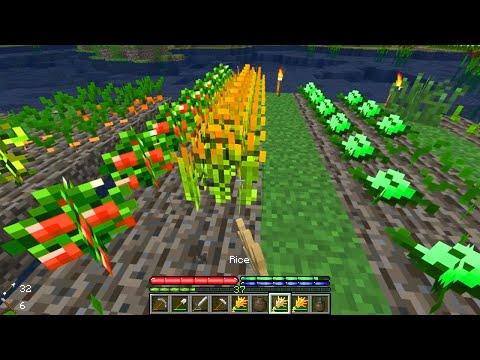 Minecraft TerraFirmaCraft #38: Exquisite Advancement thumbnail