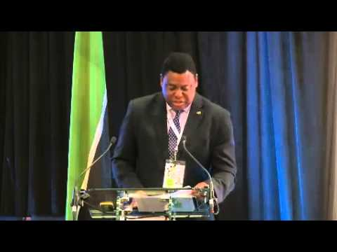 2015 GPF: Financial Inclusion in Mozambique: Experience and Main Challenges