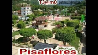 Pisaflores1817@hotmail.com
