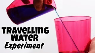 Amazing Science Experiments That You Can Do At Home - Travelling Water