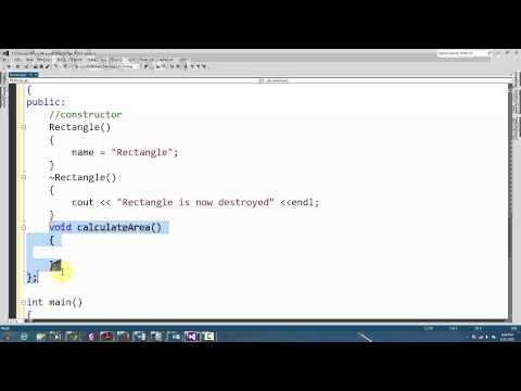 C++ programming: Classes, Inheritance, Dynamic Arrays