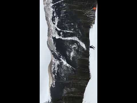 Tenacious Z, Amateur Skier
