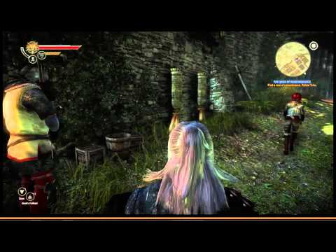 The Witcher 2: 20 Where the Wild Roses Grow