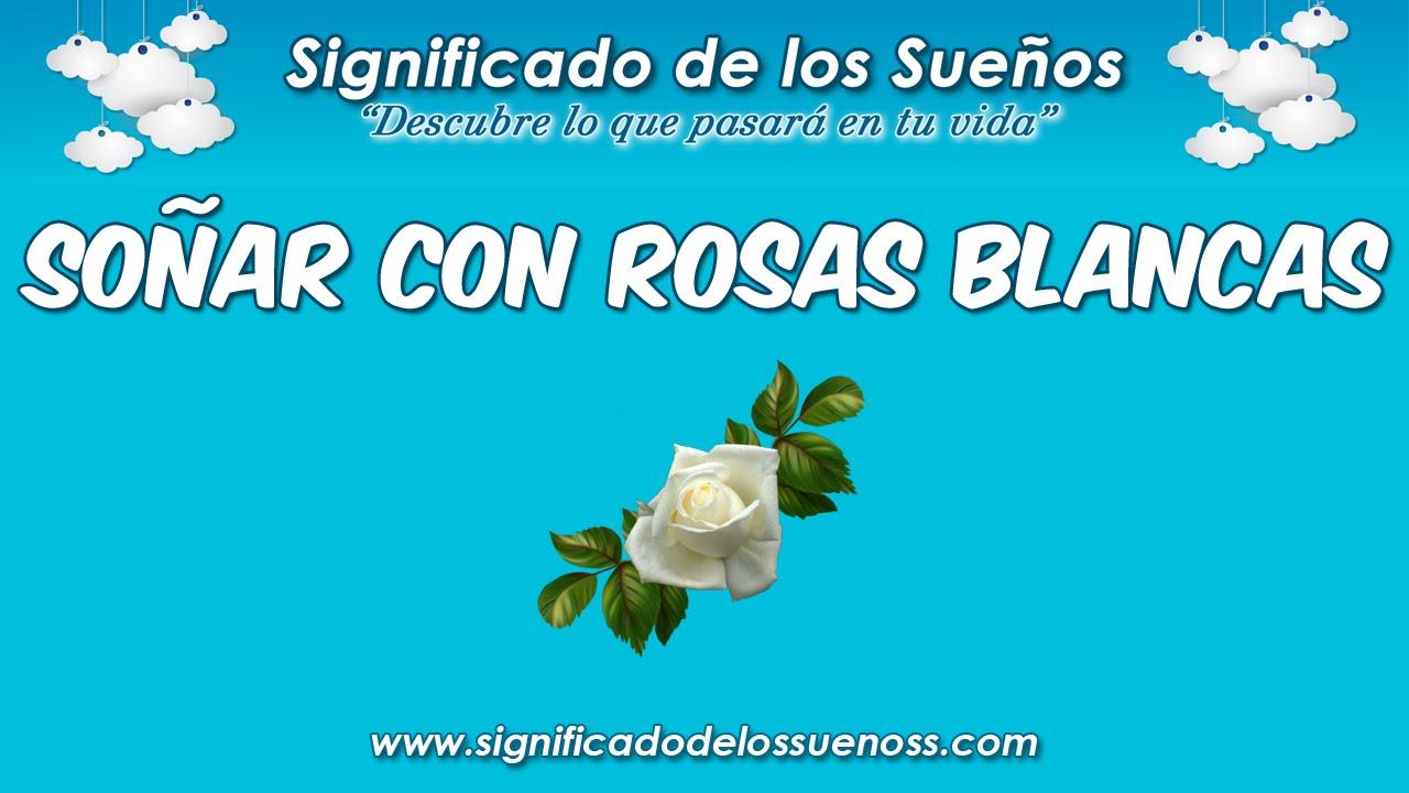 Soñar Con Rosas Blancas Qué Significa Soñar Con Rosas Blancas