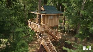 Video Behind the Build: Towering Treetop Teahouse | Treehouse Masters download MP3, 3GP, MP4, WEBM, AVI, FLV November 2017