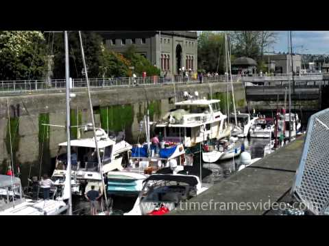 SEATTLE - BALLARD LOCKS (Hiram Chittenden Locks) - The Ship Canal