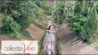 I Wanna Dance With Somebody (Whitney Houston) Violin Cover | Celeste Vee