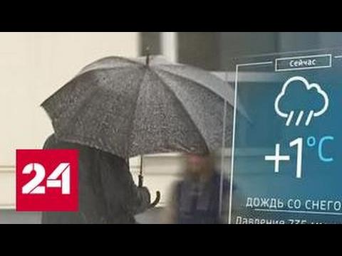 """Москвичей ждут температурные """"горки"""" и сильный ветер"""